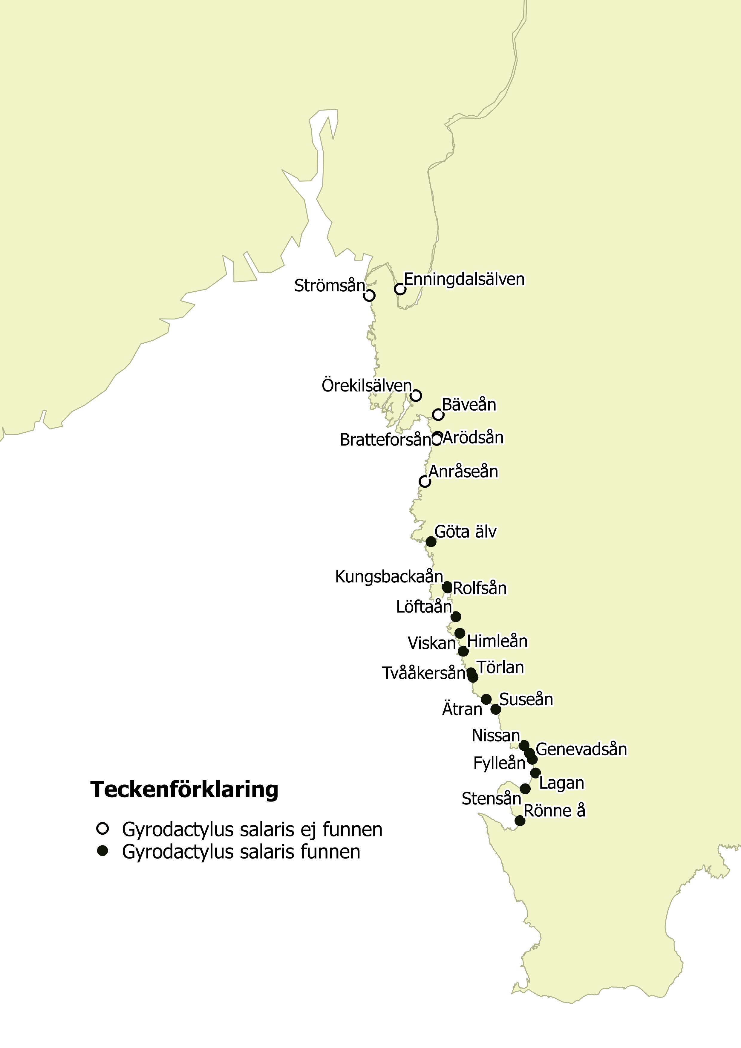 svenske vestkysten kart Lakseparasitten Gyrodactylus salaris påvist i Kungsbackaån i Sverige svenske vestkysten kart